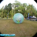 Urbanscapes 2014 : Zorbing A Hit With Festival Goers